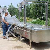 干しぶどうの洗浄および乾燥した処理機械またはJujubeの洗濯機およびドライヤー