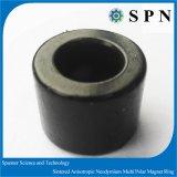 De sterke Veelpolige Ringen van de Magneet van NdFeB van de Zeldzame aarde Permante voor Motor BLDC