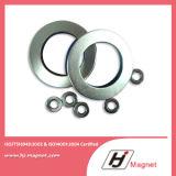 De super Sterke Aangepaste N35 Magneet NdFeB van de Zeldzame aarde van de Ring Vlakke voor Motoren