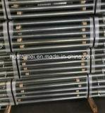 Échafaudage en acier de coffrage de planche avec le crochet
