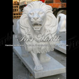De witte Leeuw van Carrara voor Decoratie ma-190 van het Huis