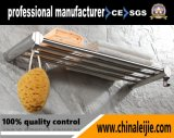 Rek het van uitstekende kwaliteit van de Handdoek van het Roestvrij staal voor Badkamers (Lj55001