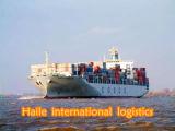 Si vite ! ! Transport maritime de la Chine à Izmir/Turquie