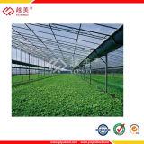 Garten-Polycarbonat PC hohles und festes Blatt-Gewächshaus