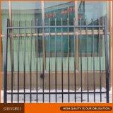 Revestimiento de polvo de galvanizado utilizan cercas de hierro forjado para la venta
