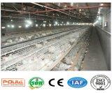 Brathühnchen-Rahmen-Geflügelfarm-Geräten-System (ein Typ Rahmen)