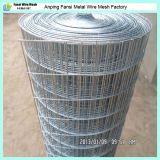 Grille métallique soudée en cage d'oiseaux galvanisé de haute qualité à vendre