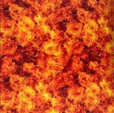 Stampa idrografica di vendita calda Tskh135-2 del Aqua della pellicola delle pellicole di stampa di trasferimento dell'acqua del cranio e della fiamma di larghezza di Tsautop 0.5m/1m