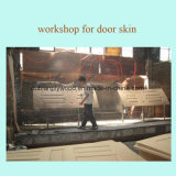 La piel de la puerta de chapa de madera