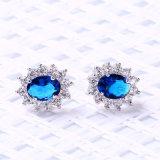 AAA CZ & 형식 주요 색깔 돌 형식 귀걸이 (553189924742)를 가진 승진 금관 악기 보석