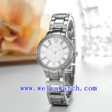 Вахта нержавеющей стали подгоняет wristwatches повелительниц (WY-018B)