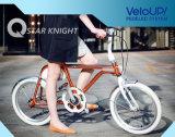 Top Model de PRO vélo d'Electrci d'ion viennent avec le système sec d'entraînement de système de Veloup