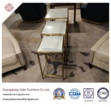 Самомоднейшая мебель гостиницы для журнального стола живущий комнаты стеклянного (8653)
