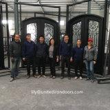 Portas Bifold do ferro feito do projeto da fábrica de China