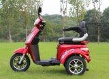 Motorino Handicapped