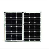 panneau solaire monocristallin populaire de 40W picovolte pour la lumière d'horizontal