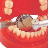 Odontología C1aa la autolimpieza resistente al agua la boca espejo antivaho