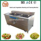 Fabrik-Zubehör-Obst und Gemüse, die Maschine mit Ozon-Generator waschen und säubern