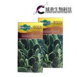 Капсулы выдержки завода кактуса эффективные Slimming