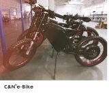 Preiswertes elektrisches Motorrad 8000W für Verkauf