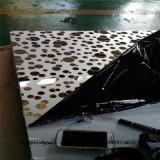 Het decoratieve Blad van de Bekleding van het Roestvrij staal van het Comité van het Metaal voor het Systeem van de Muur