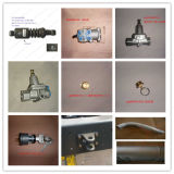 Sinotruk HOWO Wd615 디젤 엔진 Engline 기름 팬 아시리아 (Vg1540150002A)