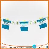 Utiliza la actividad de parte de la impresión digital cadena Bunting pequeña bandera