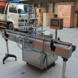Automatische magnetische Pumpen-flüssige Füllmaschine für Shampoo (YG-2)