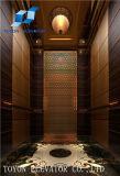 상승 시리즈에 주거 사업 건물에 있는 전문적인 업무를 가진 전송자 엘리베이터