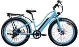 最もよい販売の女性(TDE10Z-5)のための脂肪質のタイヤEのバイク