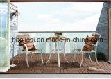 /Rattan ao ar livre/cadeira & tabela da mobília de Polywood da mobília hotel do jardim/Patio/ajustadas (HS3025C & HS 6123DT)