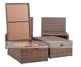 Meubles en rotin canapé ensemble des fabricants de meubles en rotin de jardin