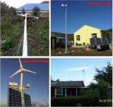 Generador de turbina trifásico de viento 500W del uso casero