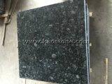 Granito Polished/naturale di verde della farfalla per le mattonelle di pavimento/controsoffitto