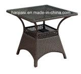 /Rattan extérieur/présidence et Tableau de rotin meubles de jardin/patio/hôtel a placé (HS 1106C et HS 7207DT)
