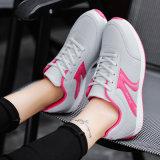منخفضة [موق] [فلنيت] باع بالجملة نساء [فلنيت] علبيّة رياضة أحذية