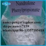 Nandrolone Phenylpropionate Npp Durabolin для дополнения культуриста