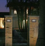 Voyant de Luminairs de pelouse avec LED-013