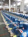 Gerador da eletricidade, alternador trifásico super do Stc de 15kw FUJI com fio de cobre puro de 100%