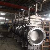 API 6D 150kg de gás de aço fundido da válvula da tampa plana