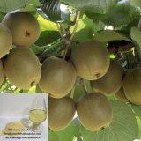 Poeder van het van bron 80% de Planten-Fabriek van het Aminozuur