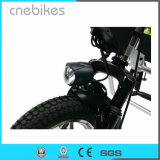 en el sillón de ruedas eléctrico Handcycle del motor 36V 350W de la rueda