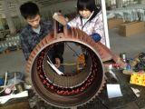 Домодельное 50kw 380V/420V генератор постоянного магнита 3 участков
