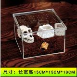 Diversas tallas de la aduana del rectángulo que introduce del reptil de acrílico transparente