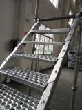 Escalera del andamio del bloqueo de la taza de la alta calidad