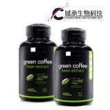 OEM 체중 감소는 최고 녹색 커피 콩 추출을 요약한다