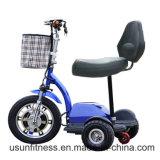 Vespa eléctrica de la movilidad de los productos profesionales del fabricante con Ce