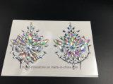 2018 schittert Bling Stickers van de Borst van de Diamant van het Kristal van de Gem van de Sticker van de Huid van het Oog de Zelfklevende Acryl (E09)