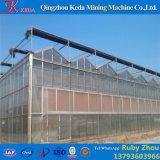 きゅうりのための商業プラスチック温室