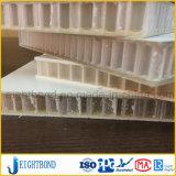 Panneau blanc de nid d'abeilles de la couleur FRP pour le corps de camion
